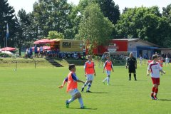 Jugendturnier 2015 - F-Junioren